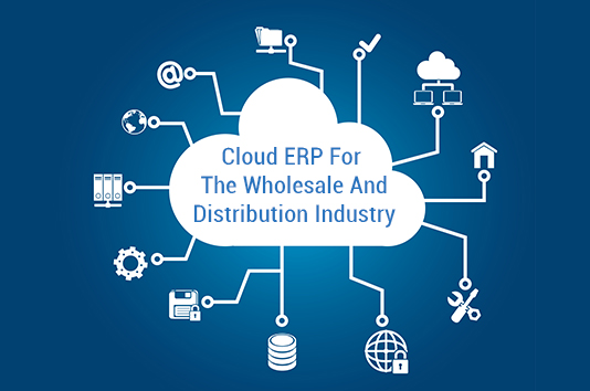 Cloud ERP For The Wholesale and Distribution Industry